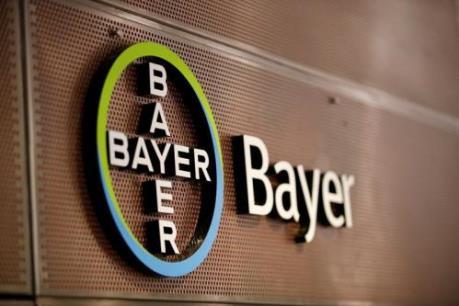 Lợi nhuận ròng của Bayer giảm hơn 30% trong quý I