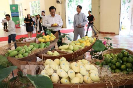 Việt Nam và Trung Quốc thúc đẩy hợp tác về thương mại nông sản