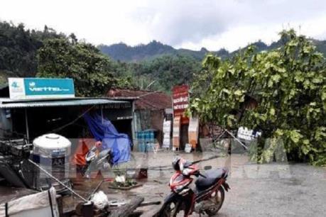 Lốc xoáy và lũ quét gây thiệt hại lớn ở Lào Cai