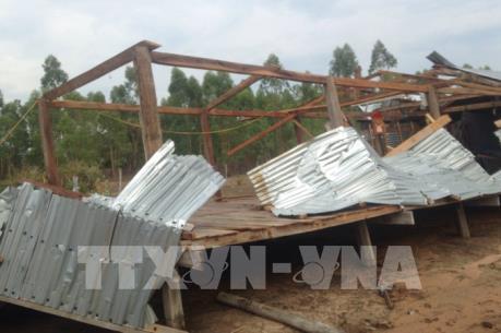 Gia Lai: Chung tay giúp người dân dựng lại nhà cửa do lốc xoáy