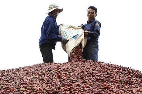 Ra mắt Trung tâm Kết nối tiêu thụ nông sản