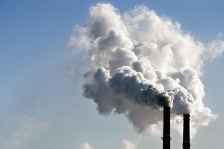 New Zealand sẽ bỏ phiếu dự luật Zero Carbon