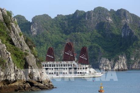 Ngắm Vịnh Hạ Long trên tàu du lịch