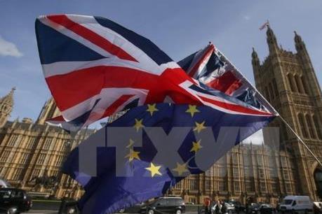 Vấn đề Brexit: Pháp không chấp thuận Anh gia hạn rời EU