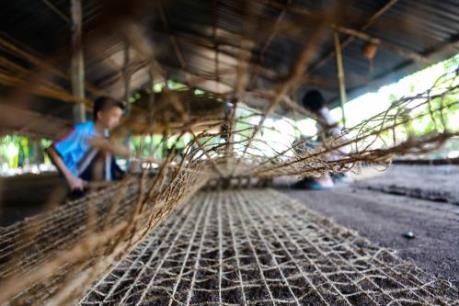 """Nghề dệt thảm xơ dừa trên quê hương """"Đồng Khởi"""""""