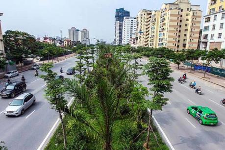 Hà Nội xén vỉa hè, dự kiến di dời gần 2.000 cây xanh