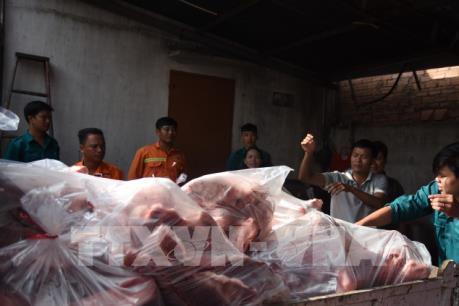 Tiêu huỷ 4 tấn thịt lợn nhiễm tả lợn châu Phi giấu trong kho lạnh