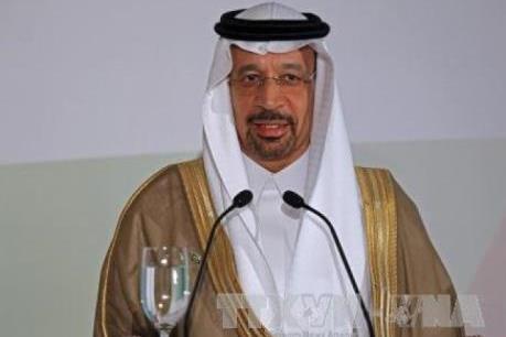 Saudi Arabia kêu gọi cắt giảm dầu mỏ dự trữ thế giới