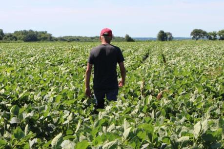 Mỹ công bố gói hỗ trợ thứ hai trị giá 16 tỷ USD cho nông dân