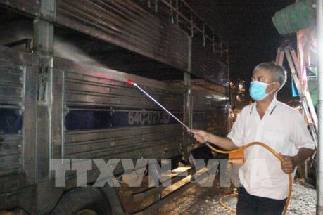 Ứng phó dịch tả lợn châu Phi xâm nhiễm Tp. Hồ Chí Minh