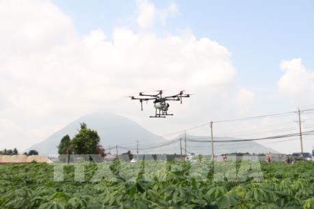 Tây Ninh trình diễn máy bay không người lái phun thuốc cây trồng