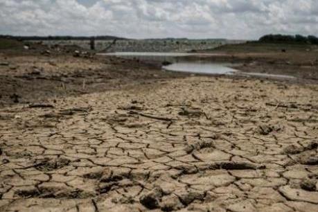 Miền Nam châu Phi: Hạn hán nghiêm trọng nhất kể từ năm 1982