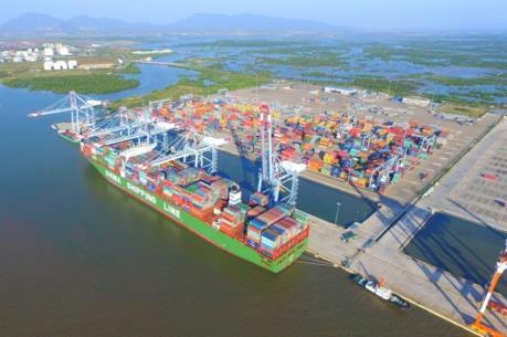 Thành lập Trung tâm kiểm tra chuyên ngành tại cảng Cái Mép - Thị Vải là cần thiết