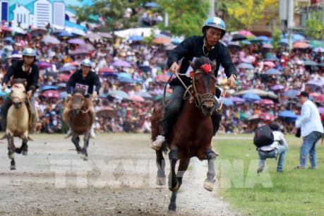 Hấp dẫn giải đua ngựa truyền thống Bắc Hà 2019