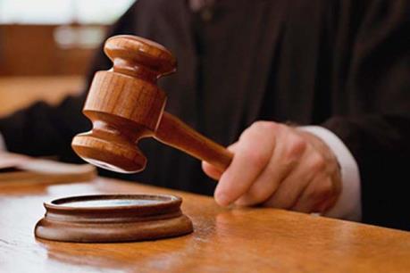 Phạt tù nguyên Chủ tịch Hội đồng quản trị Công ty Nhà Hà Nội