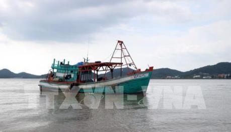 Kiên Giang kiểm tra chấp hành pháp luật trong khai thác thủy sản