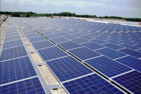 Nhà máy điện mặt trời Phước Hữu - Điện lực 1 chính thức khánh thành