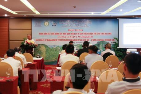 Bàn cách quản lý di sản vịnh Hạ Long