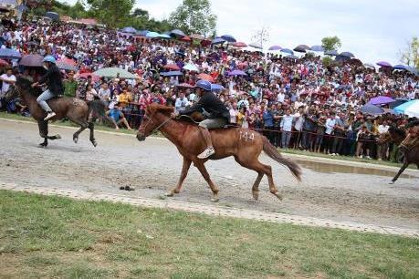 Săn mây Fansipan, cưỡi ngựa Tây Bắc - combo du lịch hoàn hảo