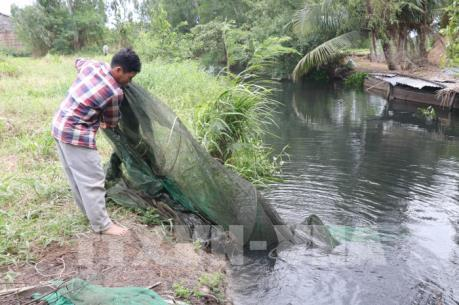 Trang trại nuôi vịt xả thải gây ô nhiễm nguồn nước