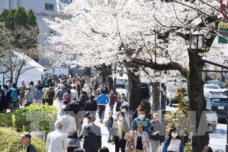Hà Nội thúc đẩy hợp tác du lịch với Nhật Bản