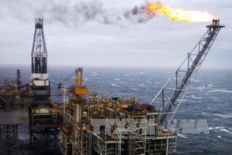 Giá dầu thế giới hạ dù kho dự trữ dầu của Mỹ giảm mạnh hơn dự báo