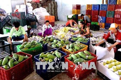 Nhiều dư địa để Việt Nam xuất khẩu nông sản vào Trung Quốc