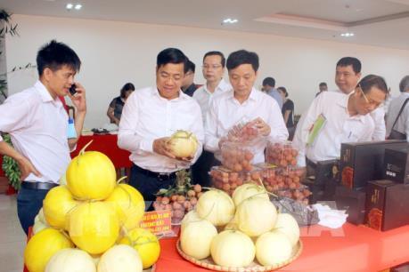 Liên kết, tiêu thụ sản phẩm nông nghiệp của hợp tác xã