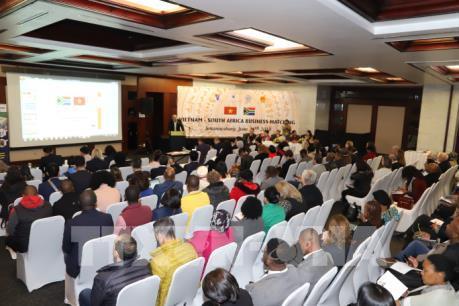 Việt Nam và Nam Phi bàn thảo đề xuất xây dựng FTA