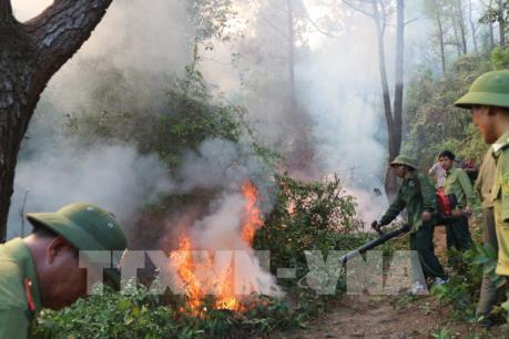 Căng mình ngăn lửa lan rộng trở lại tại Nghi Xuân, Hà Tĩnh