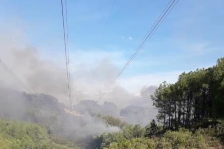 Bảo vệ an toàn đường dây 500kV nhờ kịp thời dập tắt cháy rừng