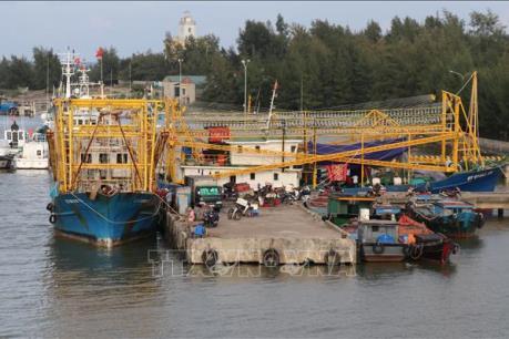 Quảng Trị khó hoàn thành quy hoạch cảng cá do thiếu vốn