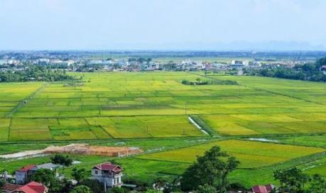 Thủ tướng Chính phủ đồng ý chuyển mục đích sử dụng đất ở 3 tỉnh