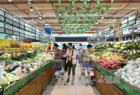 Tp. Hồ Chí Minh tăng trưởng kinh tế 6 tháng đạt 7,86%