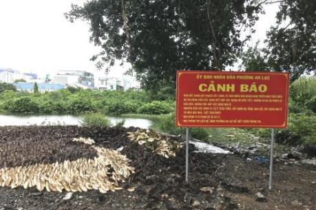 """""""Dự án ma"""" đất nền bủa vây vùng ven Tp. Hồ Chí Minh"""