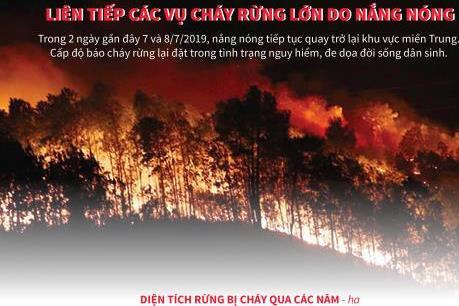Liên tiếp các vụ cháy rừng lớn do nắng nóng