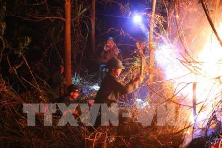 Quảng Nam: Đã khống chế được 2 điểm cháy rừng ở huyện Hiệp Đức