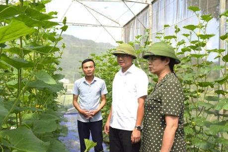 Nguồn lực cho nông thôn mới ở Hà Giang còn hạn chế