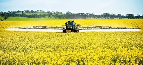 Canada đầu tư 9,95 triệu USD cho trồng trọt và đa dạng hoá ngũ cốc