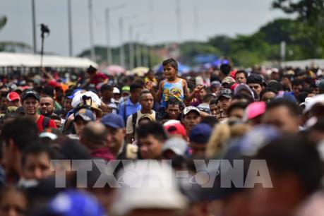 Công bố số người nhập cư bị trục xuất thời Tổng thống Trump và Obama