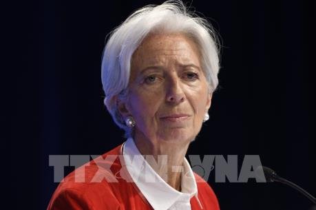 Tổng Giám đốc IMF đệ đơn từ chức