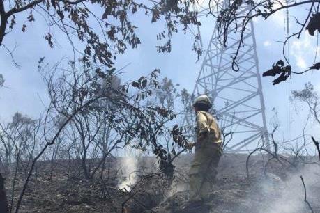 Cháy rừng, nguy cơ ảnh hưởng đến các đường dây truyền tải điện Quốc gia