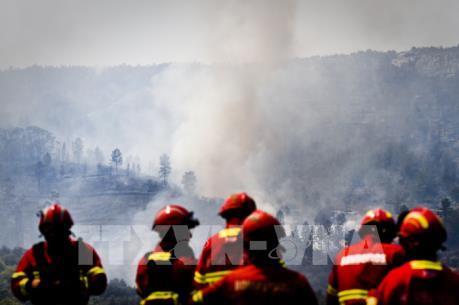 Phát hiện nhiều thiết bị nổ gần khu vực cháy rừng ở Bồ Đào Nha