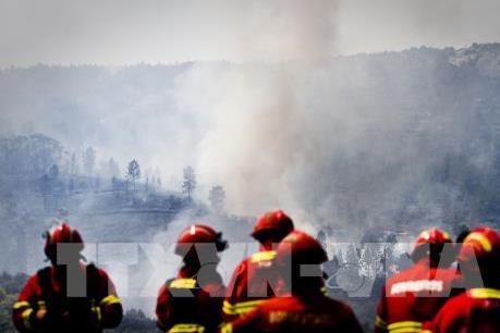 Nguyên nhân dẫn tới cháy rừng khó kiểm soát ở Bồ Đào Nha