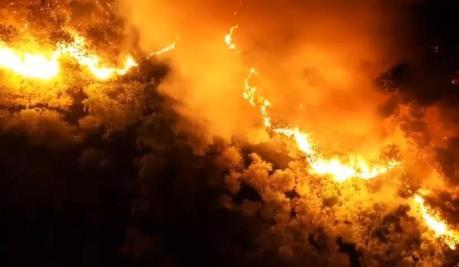 Cháy rừng phòng hộ ở Bình Định