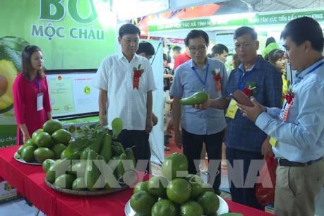 Sơn La mở rộng thị trường hàng Việt theo hướng bền vững