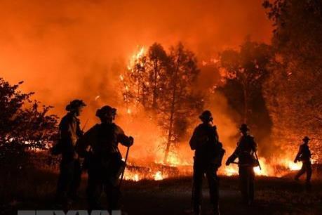 Indonesia huy động hàng nghìn cảnh sát, binh sĩ tham gia phòng chống cháy rừng