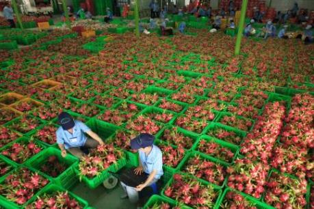 7 tháng, xuất khẩu rau quả giảm nhẹ