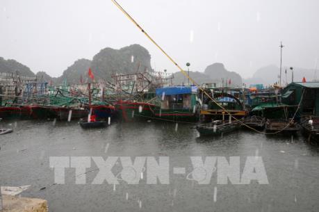 Bão số 3 đi vào phía Bắc tỉnh Quảng Ninh và suy yếu thành áp thấp nhiệt đới