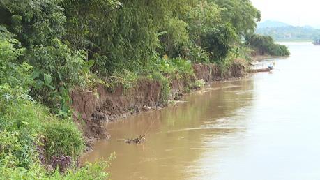 Nguy cơ sạt lở bờ vở tả sông Thao